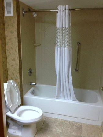 Hampton Inn I-75 Lexington/Hamburg Area: Bathroom, hot shower with curved shower rod for space