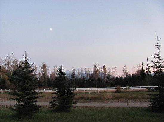 Wilderness Creek Cabins: our get away spot!