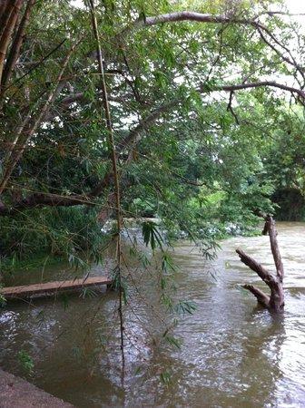 Dambulu Oya Family Park: The River