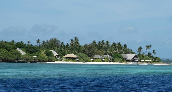 Wakatobi Dive Resort : View towards bungalows from water
