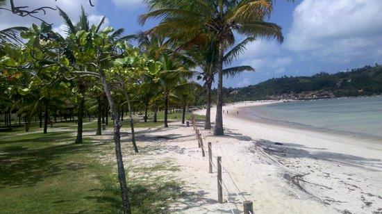 Cabo de Santo Agostinho Beach