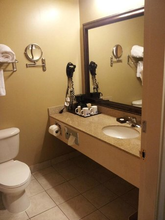 Best Western Plus Intercontinental Airport Inn: complete ... clean .. nice touches