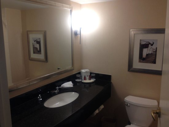 Baltimore Marriott Waterfront: Double room 14th flr