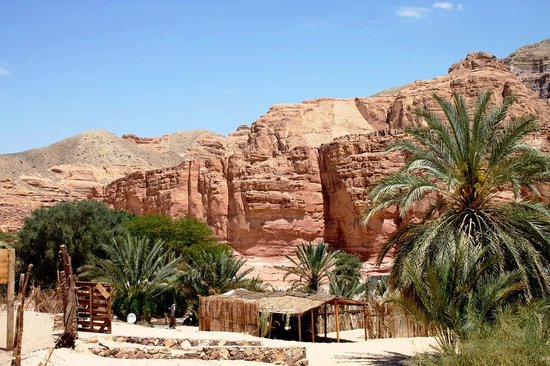 Sinai At Its Best Day Tours: Ain Khodra Oasis