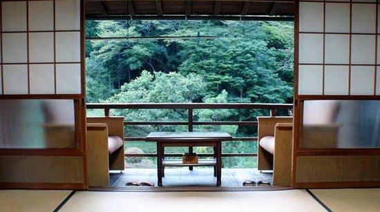 Minshuku Koshinzuka: Room and view