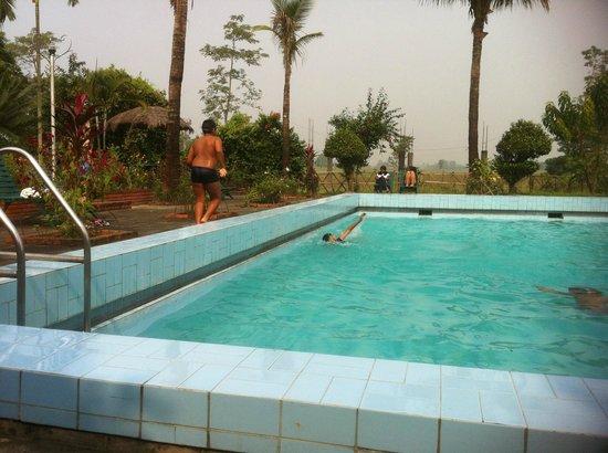 Baghmara Wildlife Resort: swimming pool