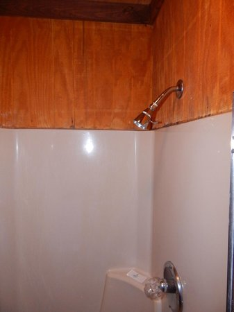 A Nice Little Motel : Shower - Wood paneling not the best choice for a wet bathroom