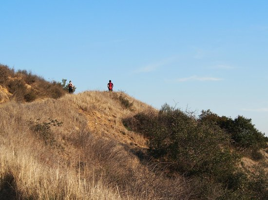 Claremont Hills Wilderness Park: View at the top