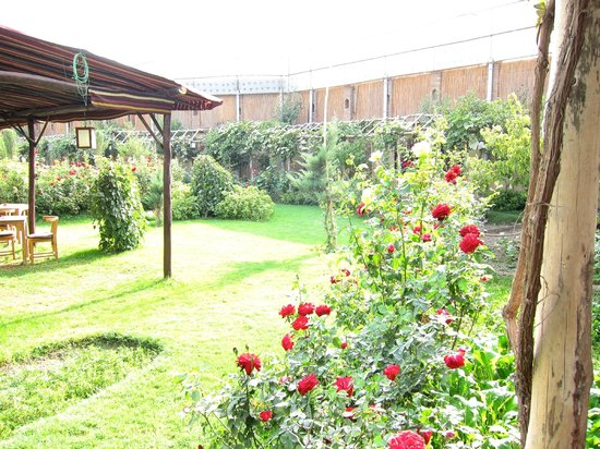 Le jardin kabul restaurant reviews phone number for Restaurant le jardin mazargues