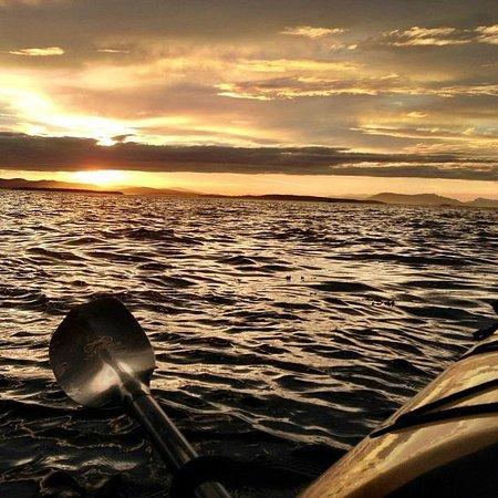 Crystal Seas Kayaking - Day Tours: Sunset Kayak Tour