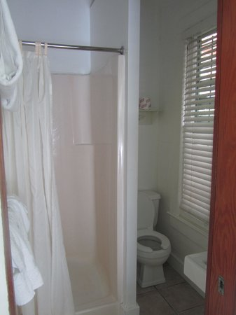 Curry House Bed and Breakfast: Bathroom, small but sufficient