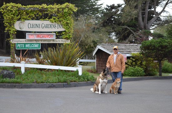 Cleone Gardens Inn: my husband with our dogs