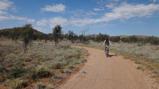 Simpsons Gap Bicycle Path: Simpsons Gap Bike Track