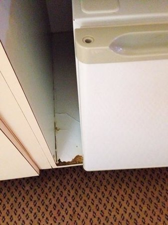 Super 8 Green Bay I-43 Bus. Park: cabinets chipped, appeared to be water damage