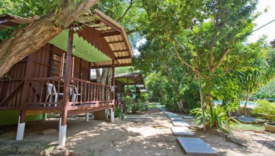 Green Villa: Bungalows Face à la Piscine