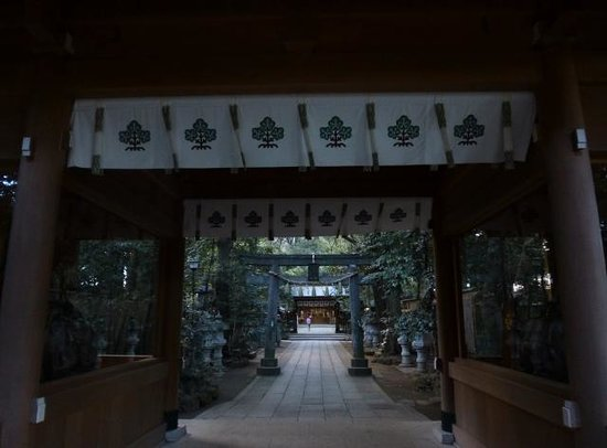 Suwa Shrine : 参道の雰囲気も