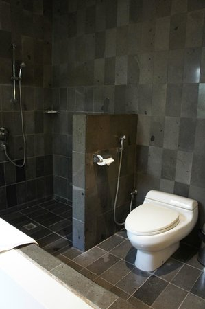 Bali Island Villas & Spa : Toilet and shower