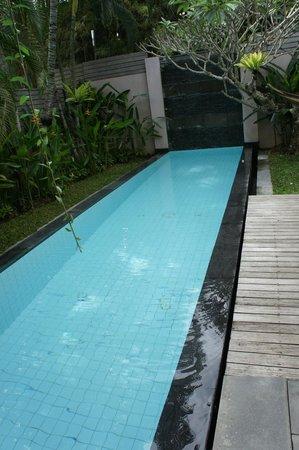 Bali Island Villas & Spa: Private Plunge Pool