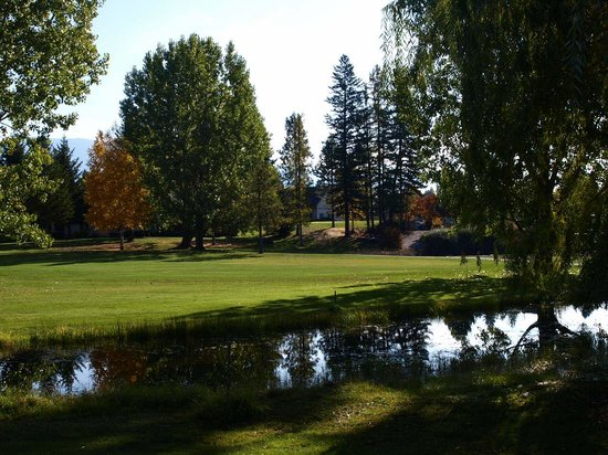 Meadow Lake Golf Resort : on the course