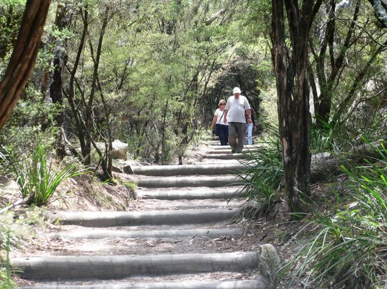 Wentworth Falls : The Path