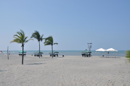 Fort ilocandia resort hotel casino investigators eye cantor gambling executive