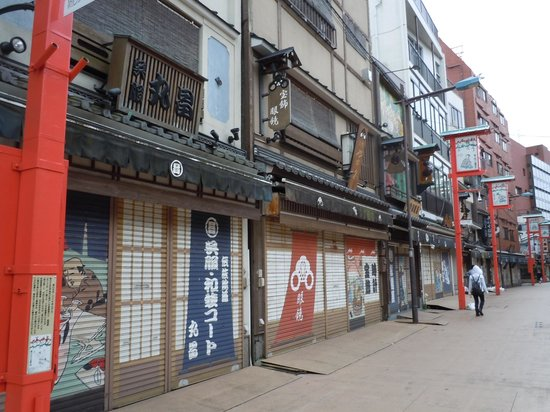 Asakusa Denpoin-dori : 浅草 伝法院通り