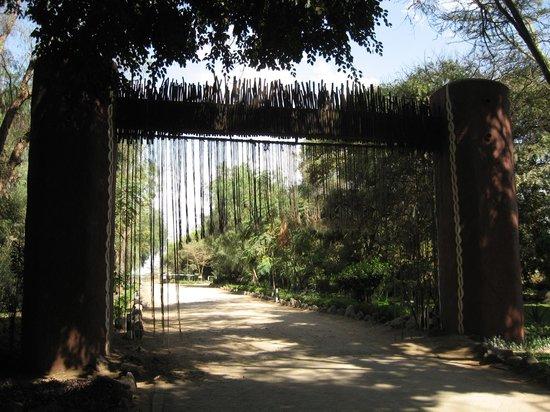 Amboseli Serena Safari Lodge: Rope to stop elephants