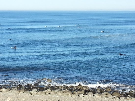 Lanai at the Cove: Lots of surfers out today