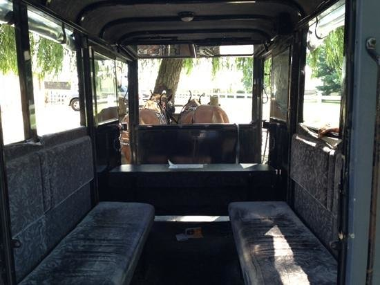 Abe's Buggy Rides : inside buggy