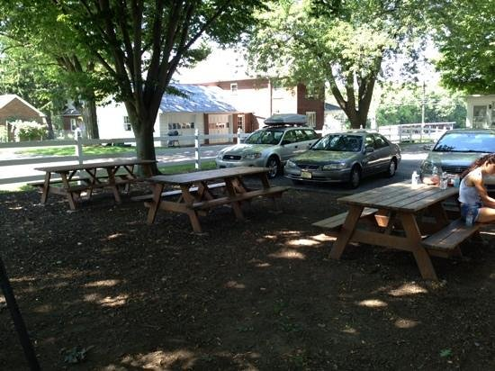 Abe's Buggy Rides : picnic area