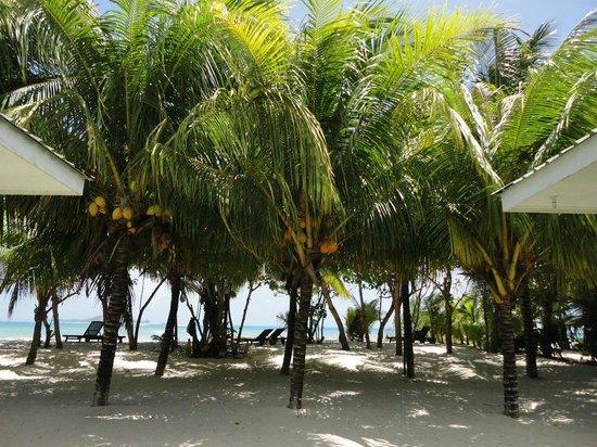 Cap Jean Marie Beach Villas: Cap Jean Marie Villas Beach