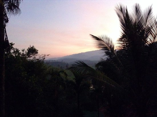 Grassroots Wayanad : Evening from our tent