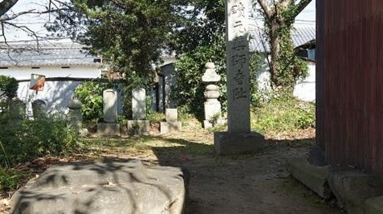Ruins of Motoyakushiji Temple: 本薬師寺の石柱