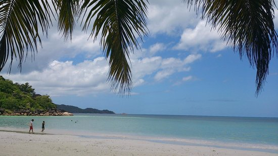 Paradise Sun: Beach