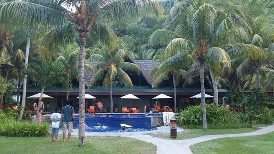 Paradise Sun: Pool