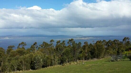 Mount Nelson Lookout: Nelson Lookout