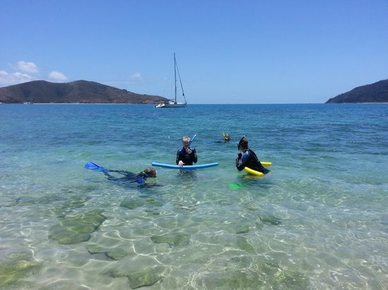 Pacific Blitz - Private Day Sailing: Snorkling near Hayman Island - we saw turtles