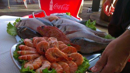 Restaurant & Grill Muralha: Fresh local fish