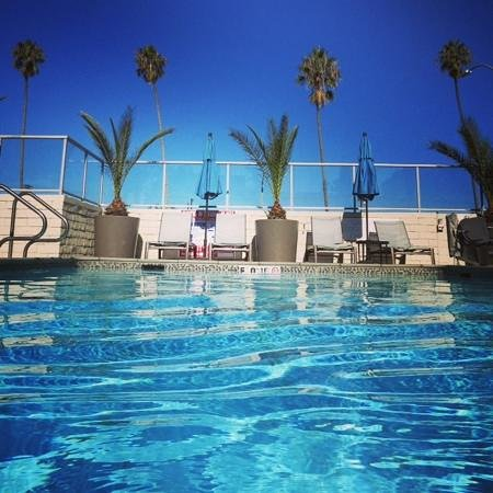 Hilton Garden Inn Los Angeles Marina Del Rey: Hotel swimming pool