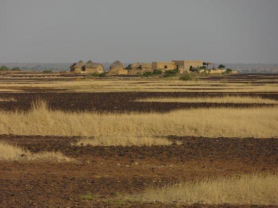 Pabu Ki Dhani eco Farm : Pabu Ki Dhani