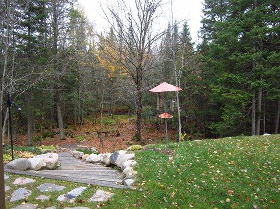 Gite La Petite Douceur : Back garden