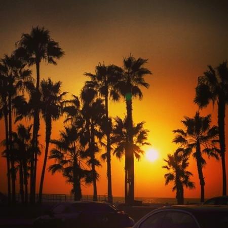 Hilton Garden Inn Los Angeles Marina Del Rey: Just the best sunsets on Venice beach 15 mins walk from hotel