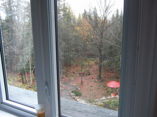 Gite La Petite Douceur: view from the bedroom