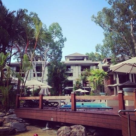 Pullman Palm Cove Sea Temple Resort & Spa : pool area