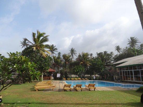 Insight Resort: The pool