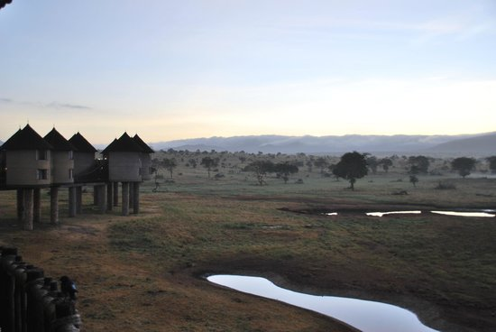 Sarova Salt Lick Game Lodge: Morning view from our room