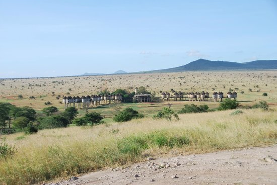 Sarova Salt Lick Game Lodge: Spoted the lodge from the highest hill