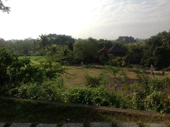 วิลล่า มิมพิ มานิส บาหลี: view from the pool to temple