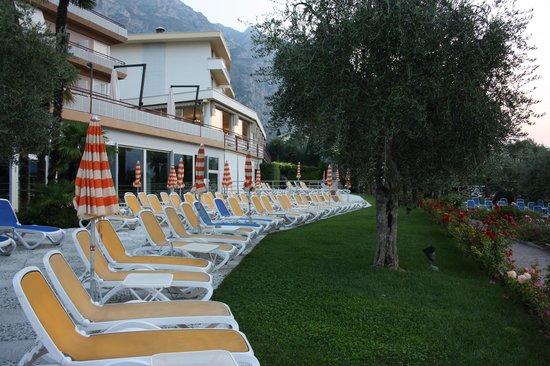 Hotel Ideal: garden