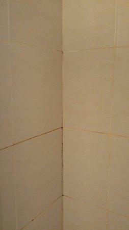 ABC Hyde Park Hotel: Mouldy shower
